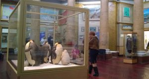 First ever museum of polar lands opens in France