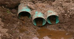 Condom-clogged sewer pipe leads Texas police to brothel