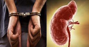 FIA arrests two more accused in Kidney scandal