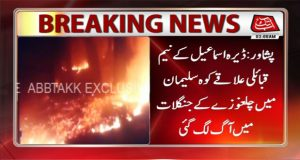Peshawar: Fire Erupts In Forests Of Pine Nuts