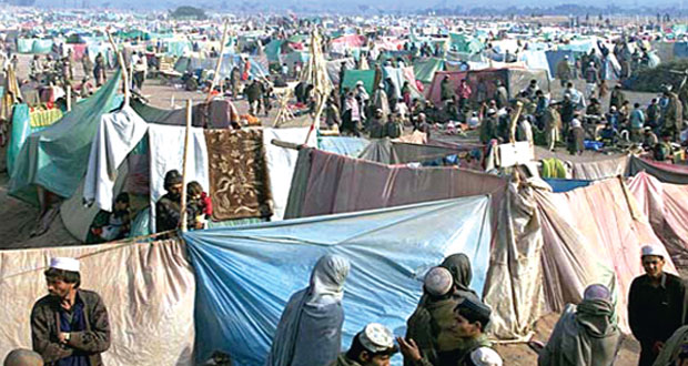 Pakistan, Afghanistan Discuss Dignified Return of Refugees