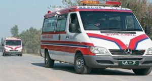 Driver killed, 11 passengers injured in bus-truck collision