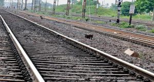 Lahore-Wazirabad Train Service Suspended For Unknown Period