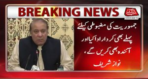 PML-N Continue to Play Role for Cementing Democracy: Nawaz