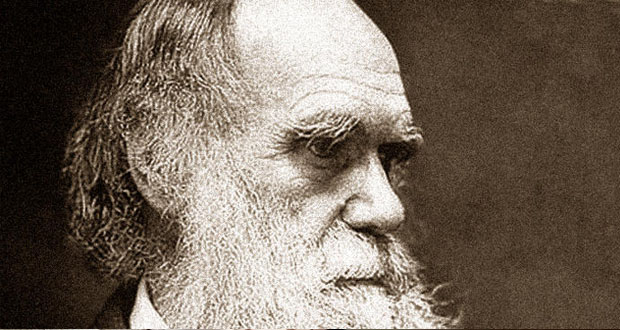 Happy Birthday Darwin!