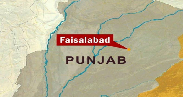 Chemical Thread Effects Birds In Faisalabad