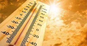 India Has Tackled The Heat Wave Issue, Reports