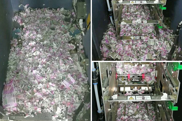 Mice Eats Cash Worth 1.2 Million In India
