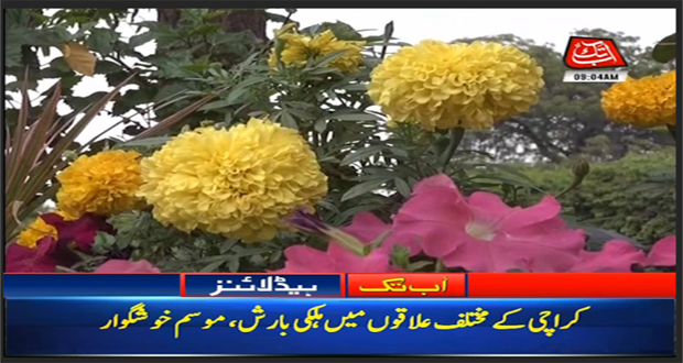 Light Drizzle In Karachi Turns Weather Pleasant
