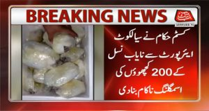 Sialkot: Customs Foil Smuggling Bid of 200 Rare Turtles