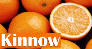 Low Kinnow Yield Expected This Year