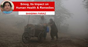 Smog, Its Impact On Human Health & Remedies